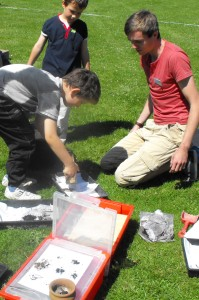 Investigating environmental samples processed by bucket flotation