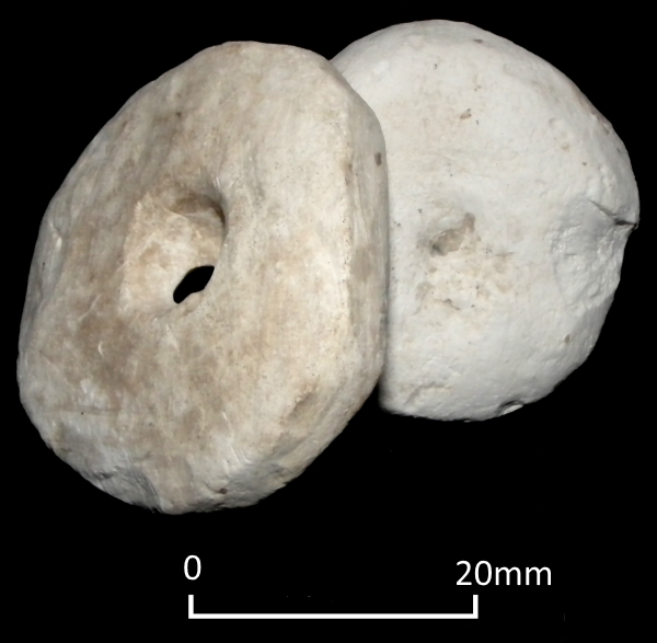 Two Iron Age chalk loomweights from North Foreland, Broadstairs.