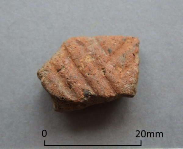Late Neolithic Grooved Ware sherd